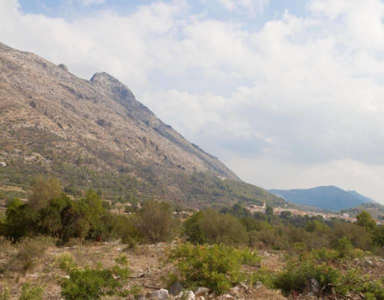 Terrenos rurales - gv201504-a