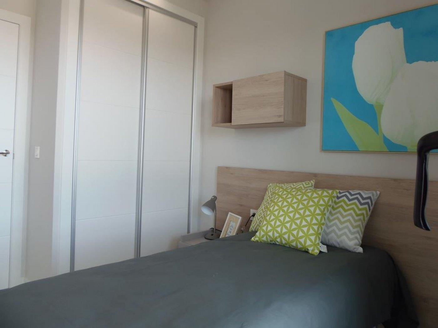 Apartment in Pilar de la Horadada Playa
