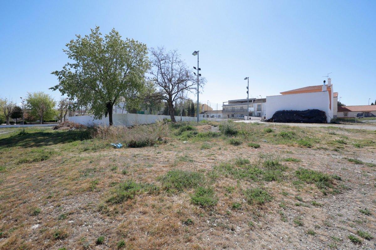 Solar de 254 m2 junto a la plaza de la iglesia de hernán valle, ideal para construir vivie - imagenInmueble10