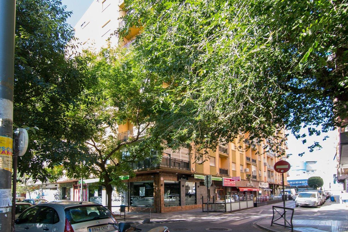 CALLE GONZALO GALLAS, Granada