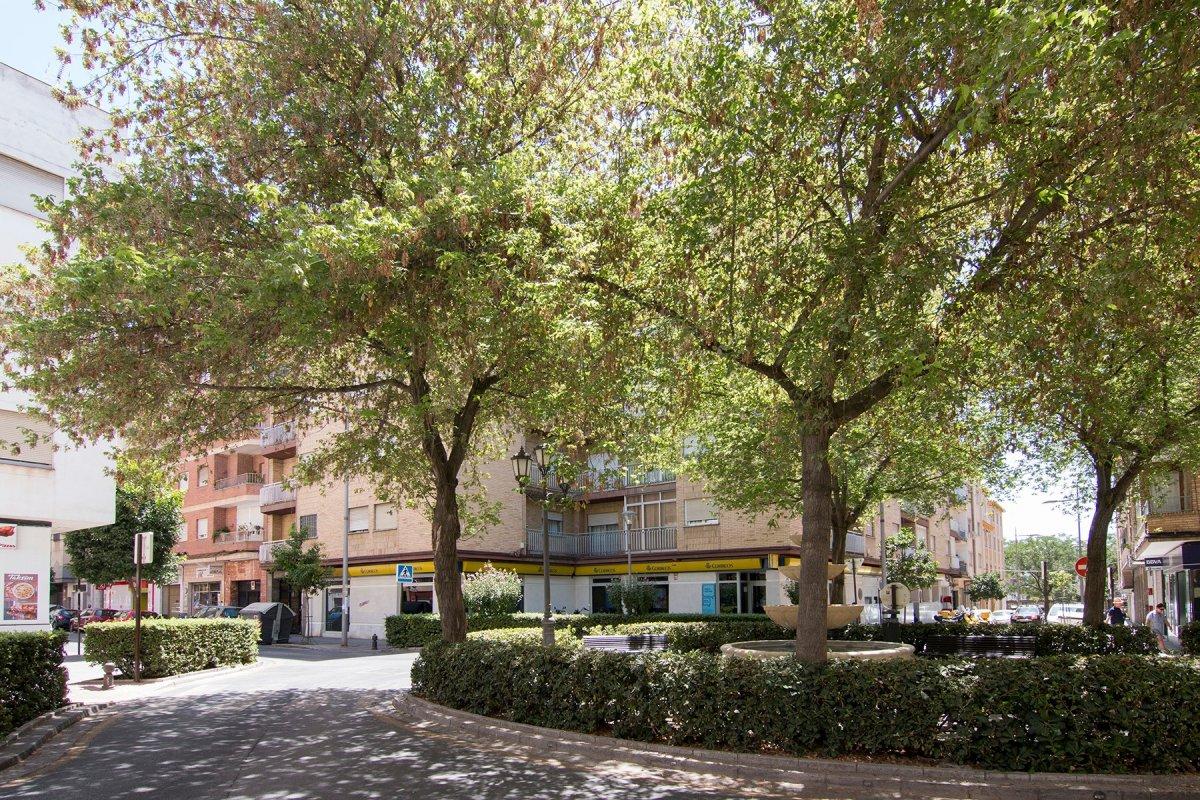 BARRIO PAJARITOS CALLE TORTOLA, Granada