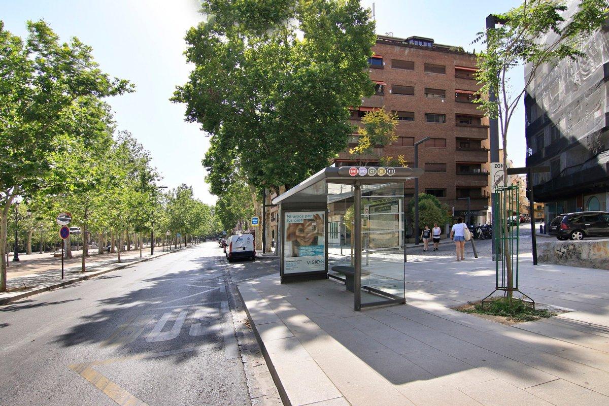 JUNTO PASEO DEL SALÓN, Granada