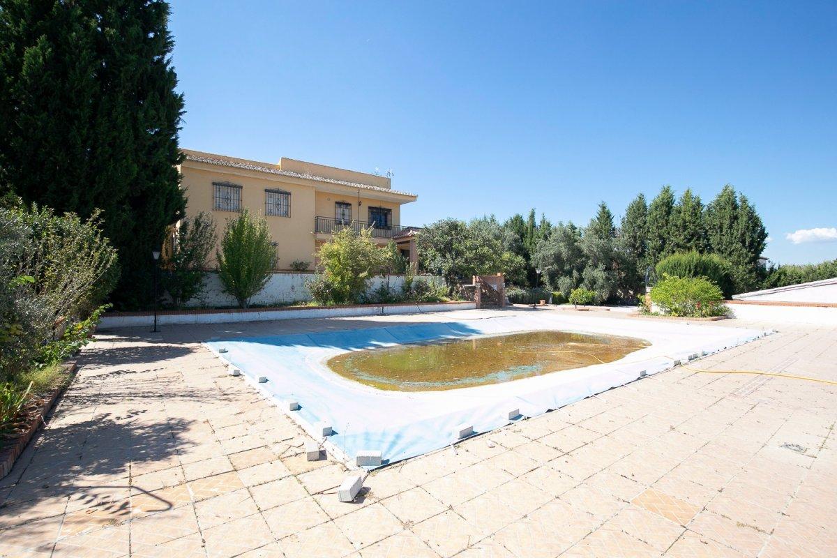 Paz, tranquilidad, vistas preciosas, es lo que se respira en esta finca a un paso de Granada., Granada