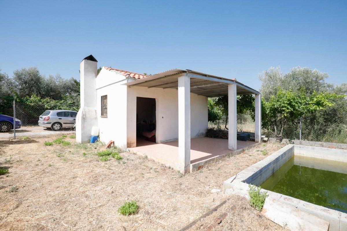 Estupenda finca rústica con casa de aperos y estanque en Otura, Granada