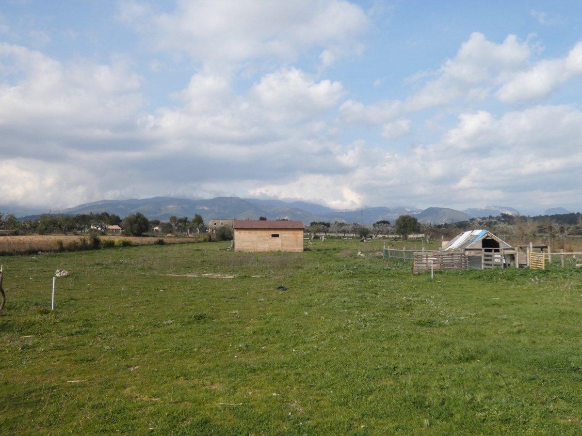 Finca for sale in Sa Cabaneta, Marratxi