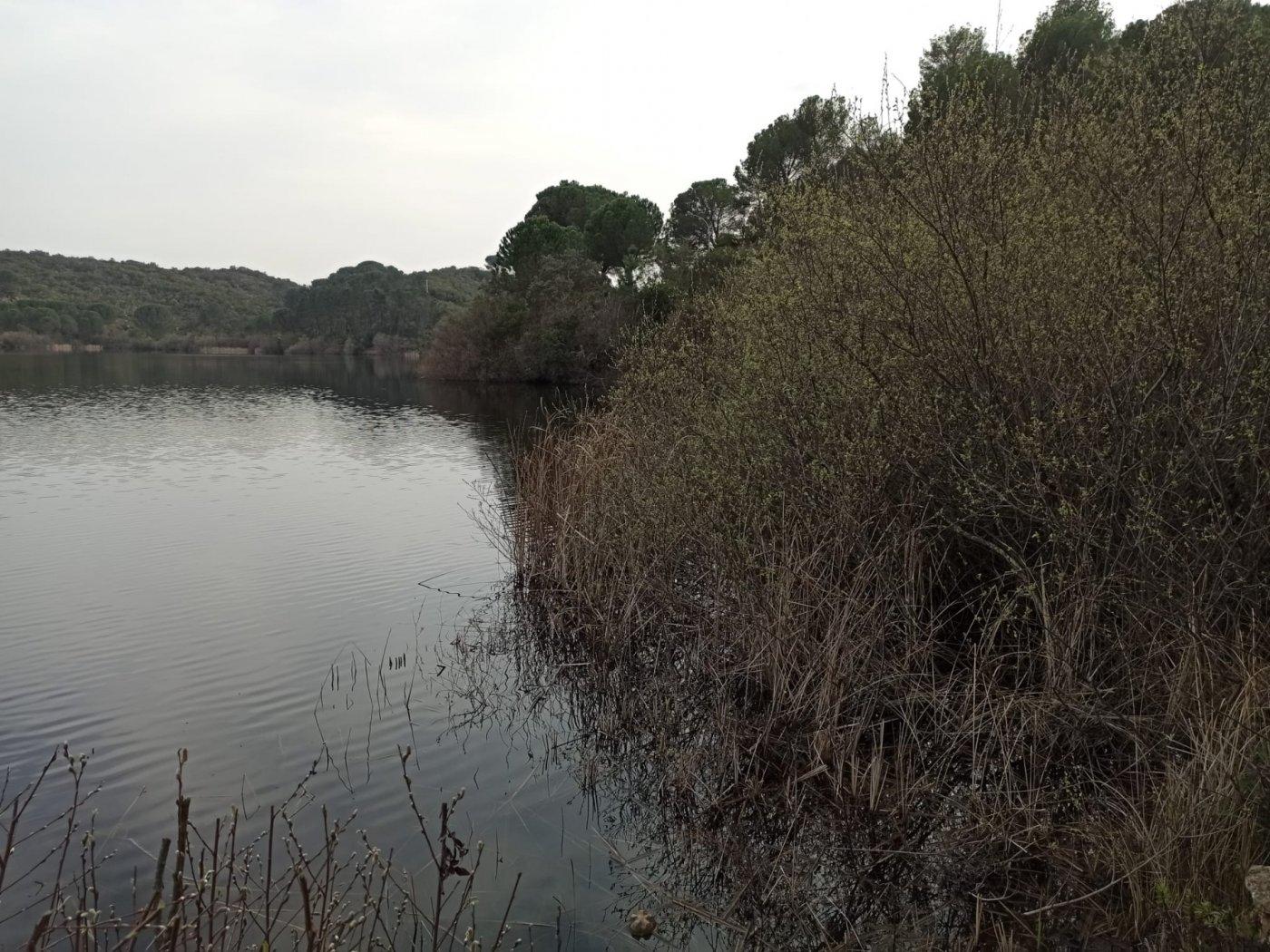 Se vende parcela urbana en las jaras a orilla del lago - imagenInmueble12