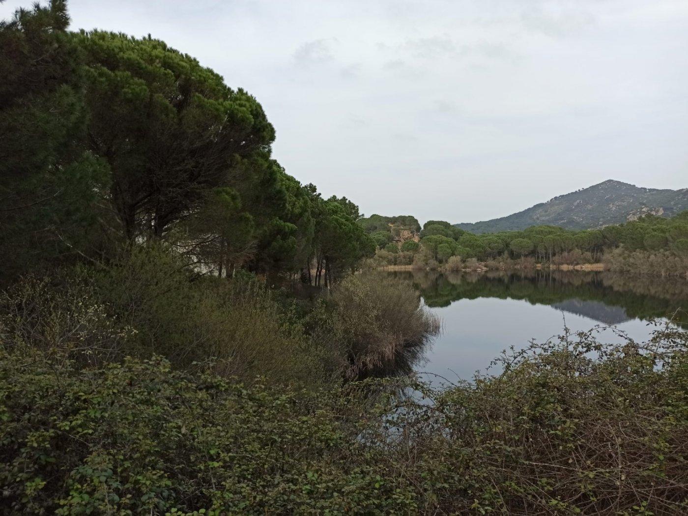 Se vende parcela urbana en las jaras a orilla del lago - imagenInmueble4