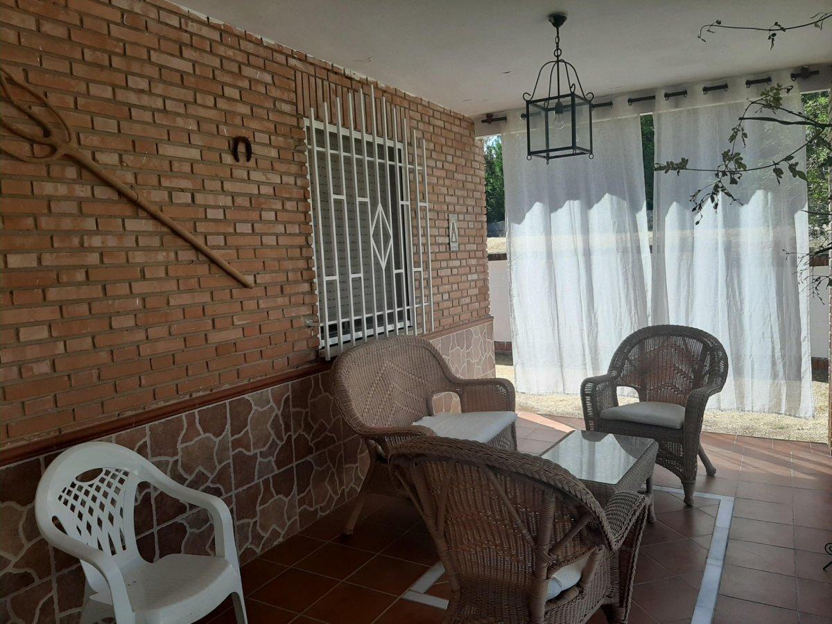 Estupenda casa con piscina propia en zona de assuan- las jaras-cÓrdoba. - imagenInmueble11