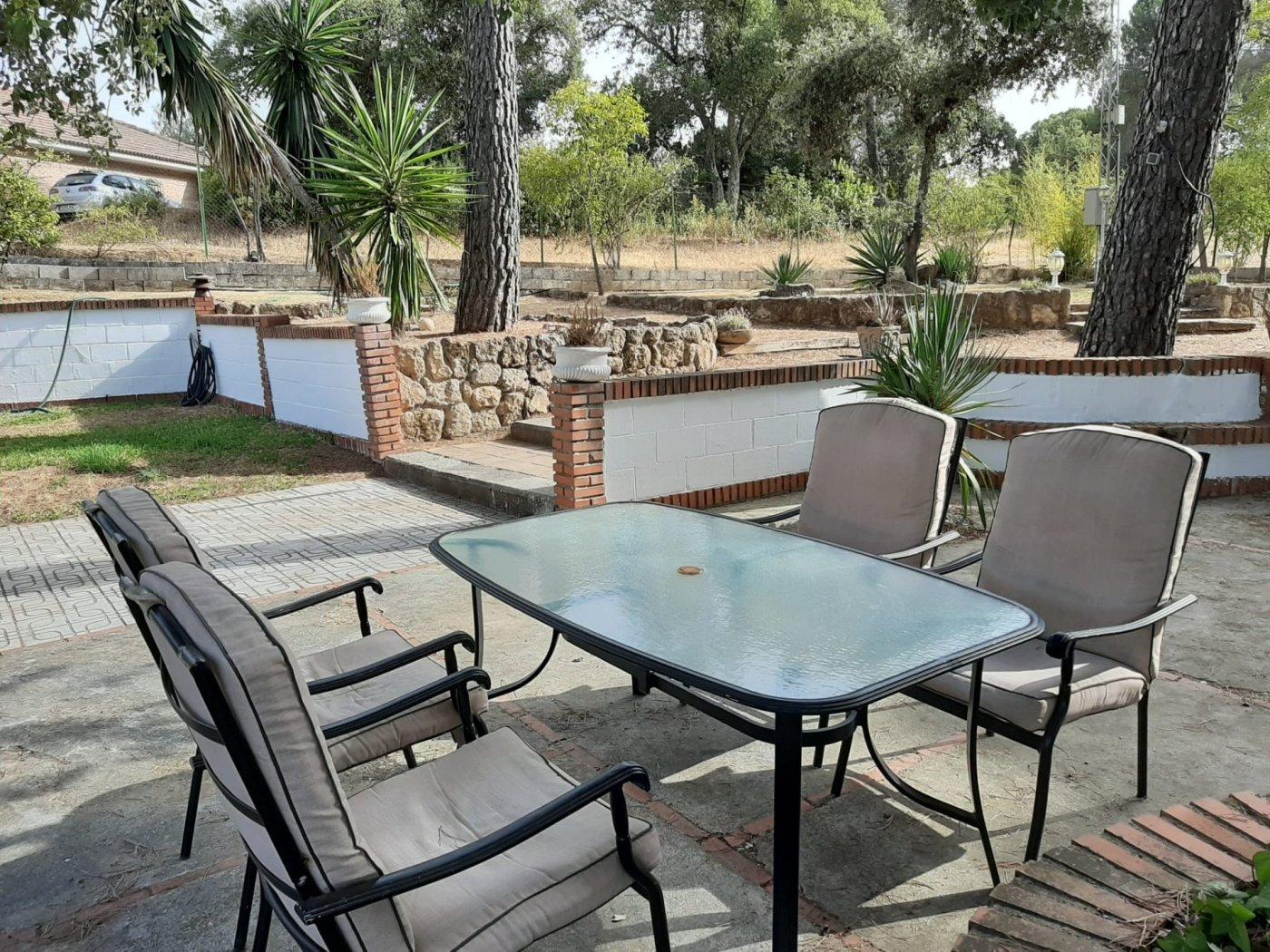 Estupenda casa con piscina propia en zona de assuan- las jaras-cÓrdoba. - imagenInmueble6