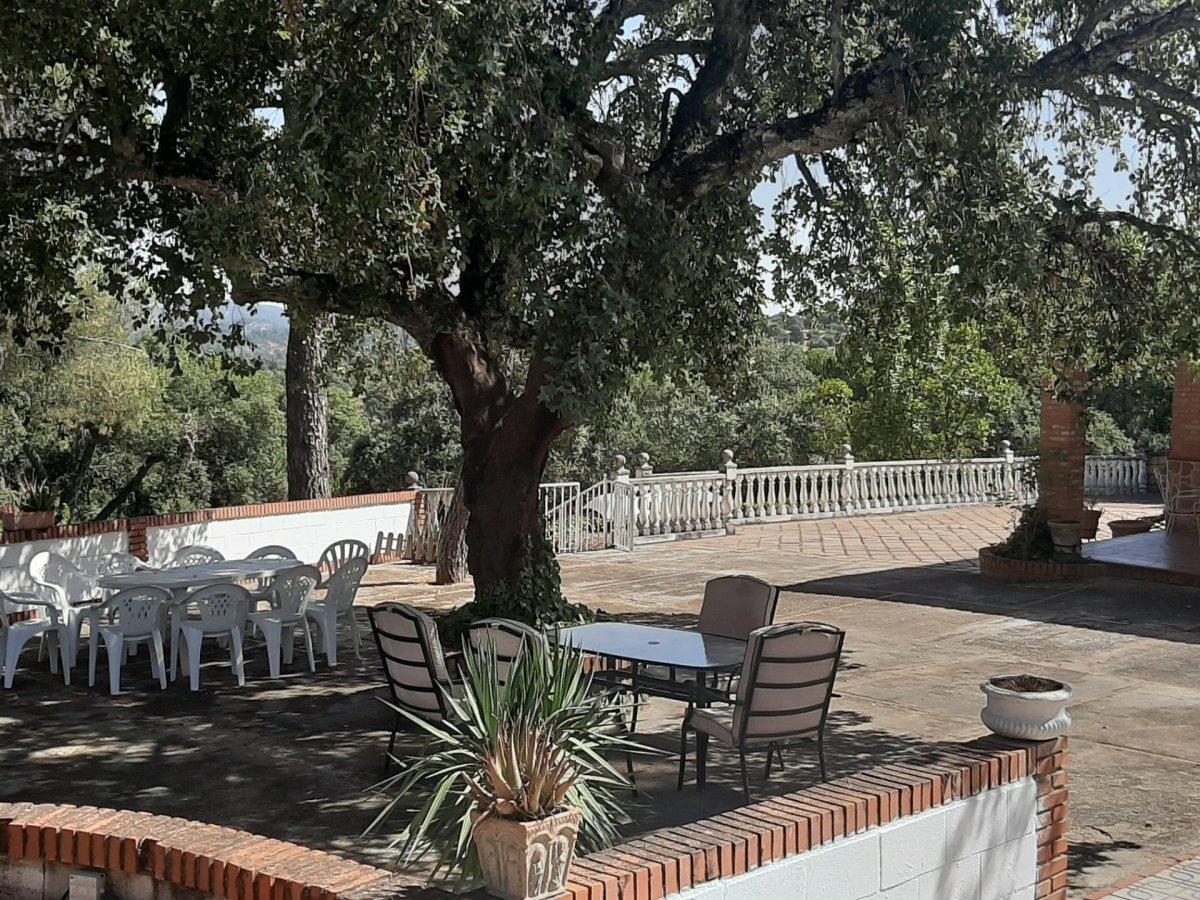 Estupenda casa con piscina propia en zona de assuan- las jaras-cÓrdoba. - imagenInmueble8