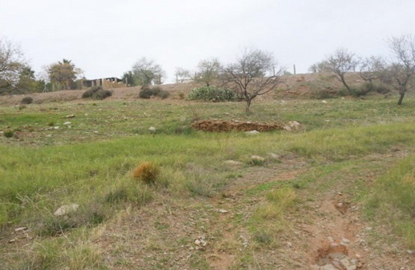 Terreno rural en Adra