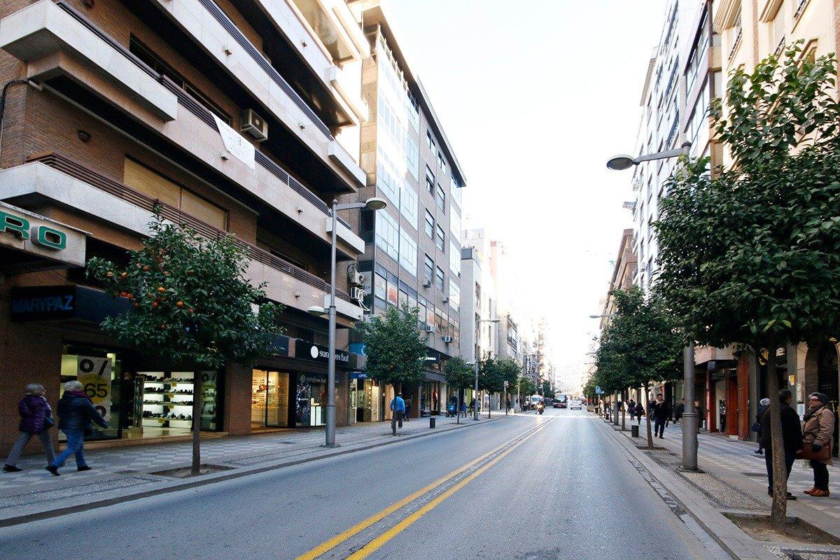 Flat for sale in Recogidas, Granada