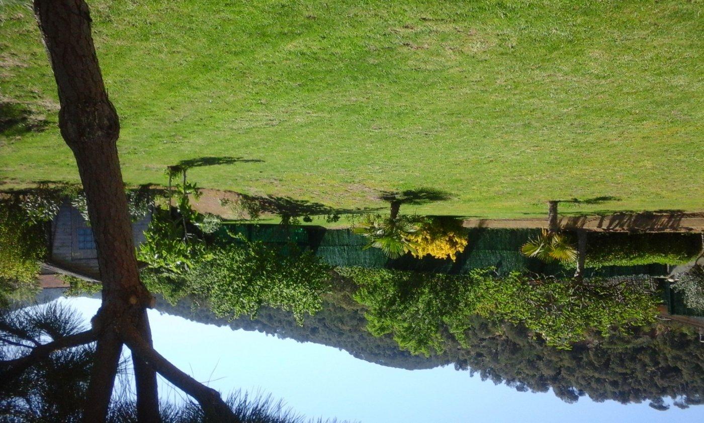 Fantástica casa rural en sant feliu de buxalleu - imagenInmueble31