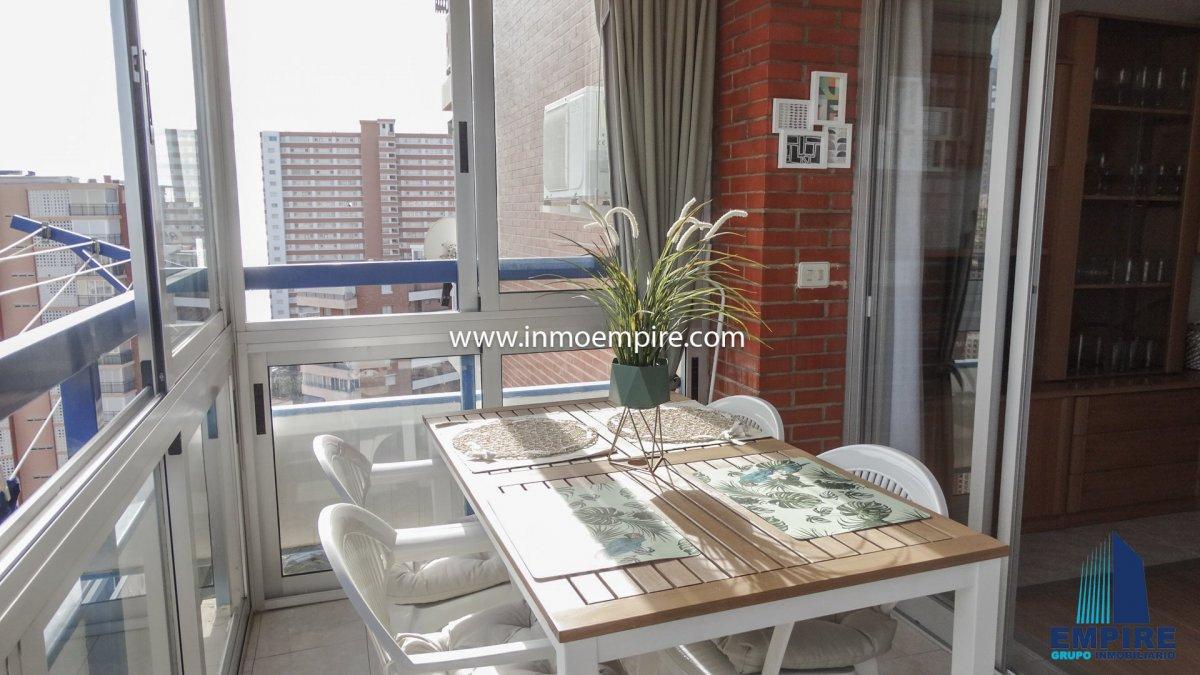 apartamento en benidorm · benidorm 550€