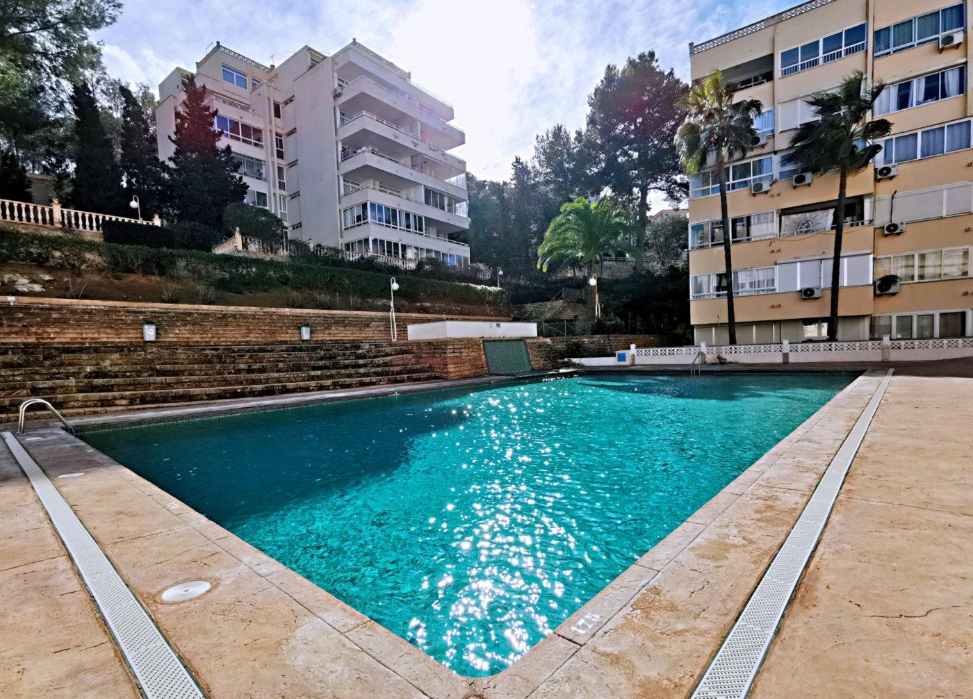 Se vende piso de dos dormitorios con piscina y parking comunitaria - imagenInmueble3