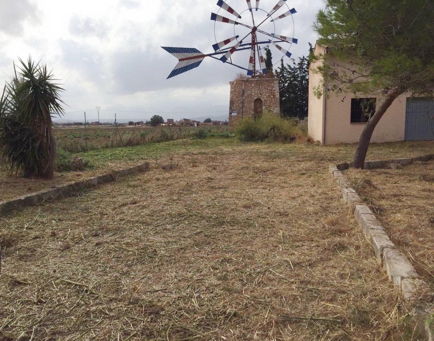 Terrenos rurales - hdz814