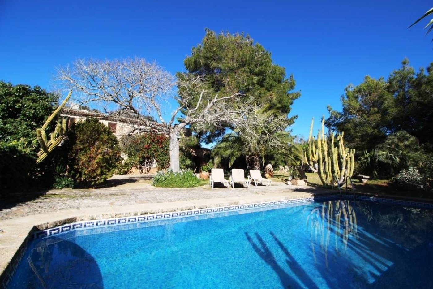 country-estate en felanitx · cas-concos 1800€