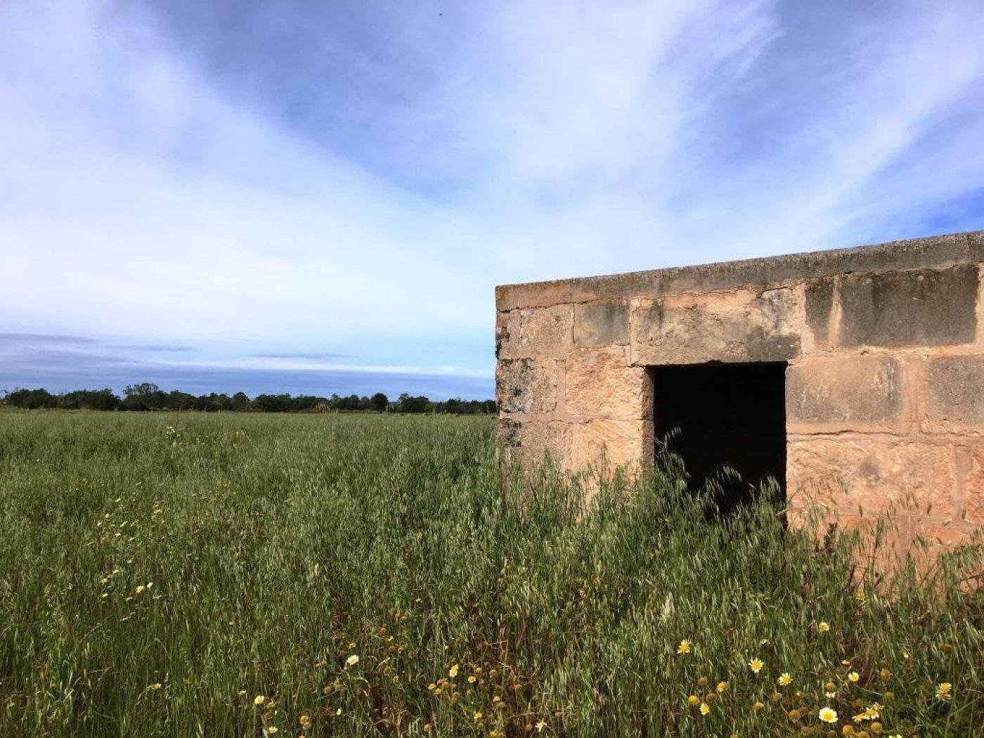 terreno-rural en campos · campos 140000€