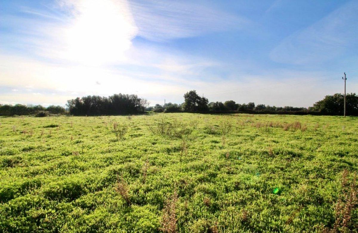 Rural Land · Felanitx · Mallorca 120.000€€