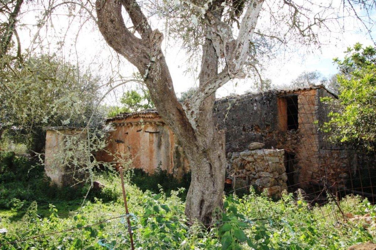 House · Lloret De Vistalegre · Lloret De Vista Alegre 320.000€€