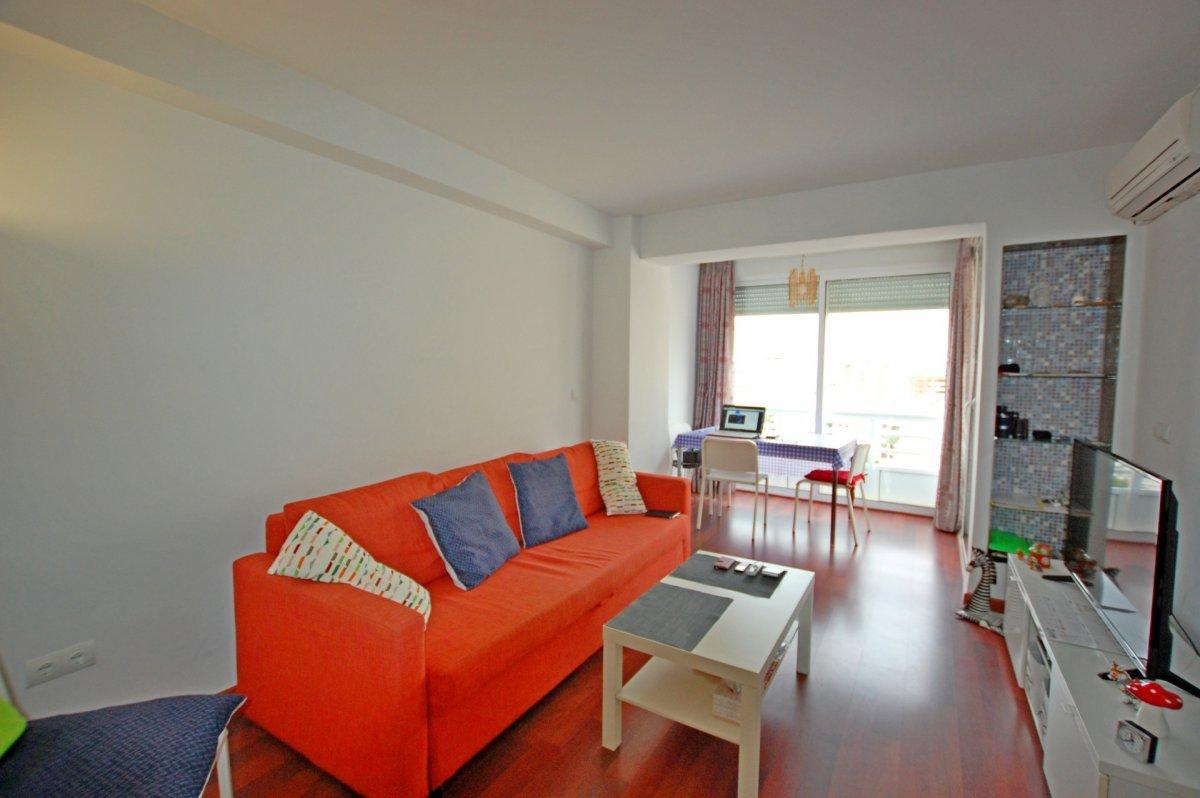 Apartamento 1 dormitorio en la carihuela - imagenInmueble2