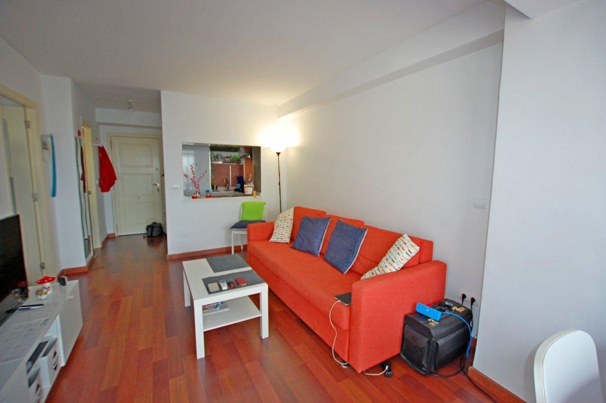 Apartamento 1 dormitorio en la carihuela - imagenInmueble4