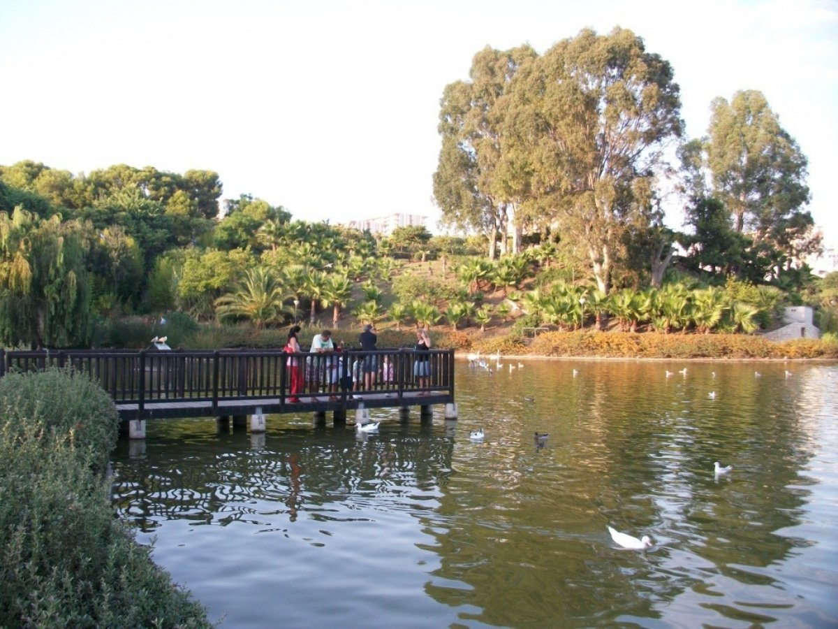 Apartamento en pueblo andaluz con encanto junto al parque de la paloma - imagenInmueble17