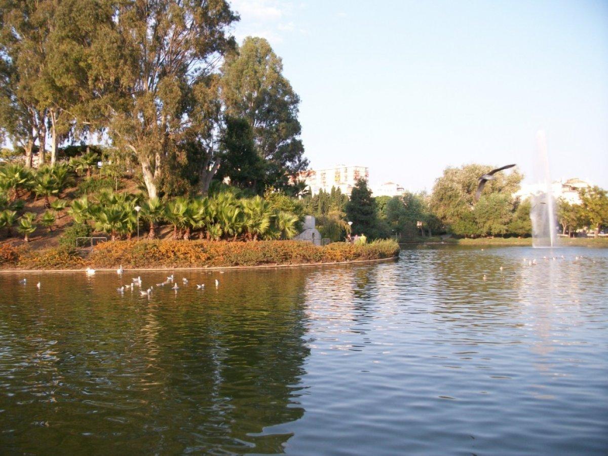 Apartamento en pueblo andaluz con encanto junto al parque de la paloma - imagenInmueble21