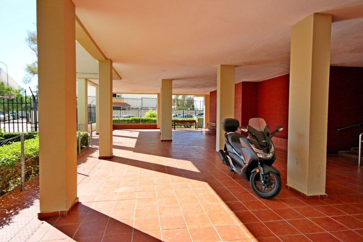 Piso de 4 habitaciones junto a la rosaleda - imagenInmueble24
