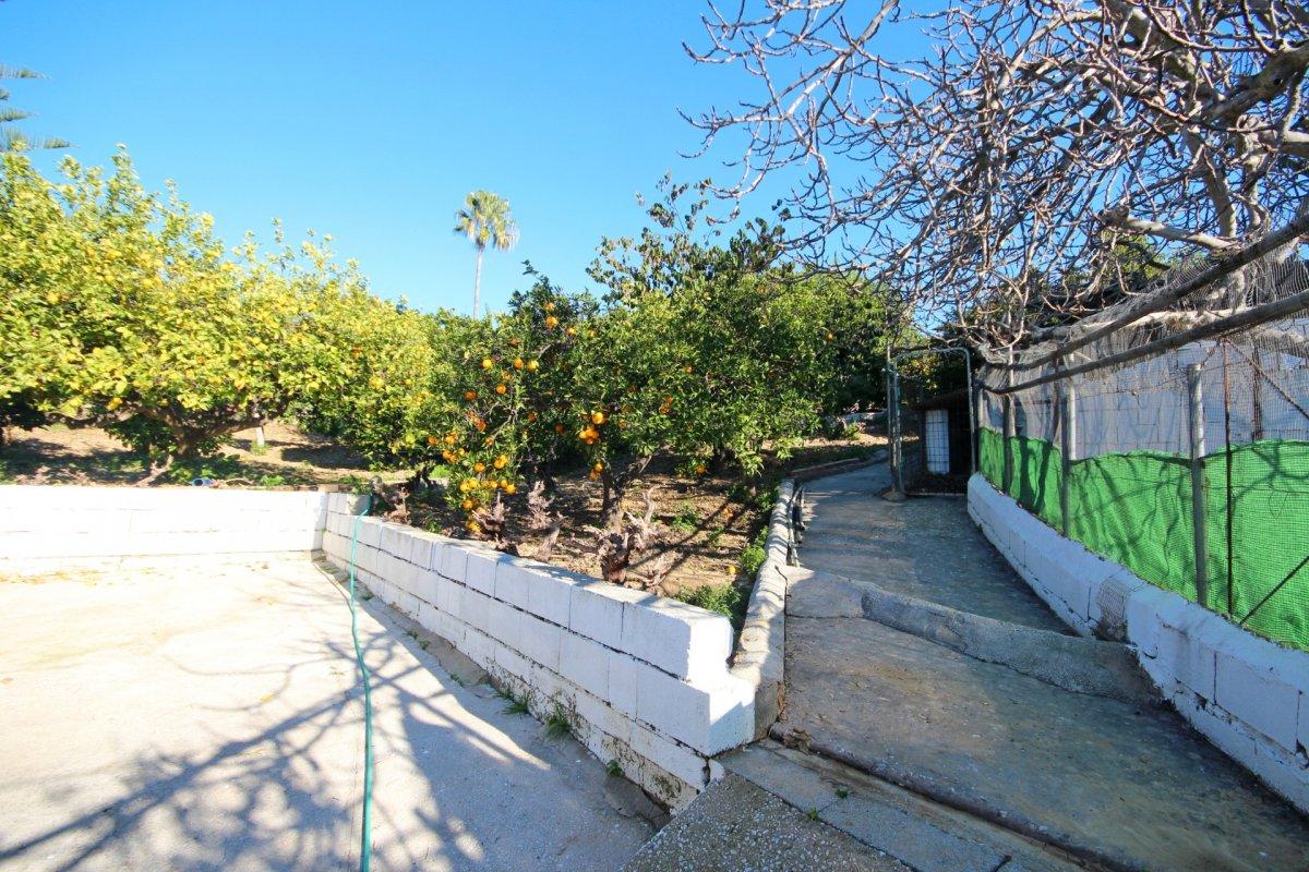 Finca de 4200 metros con chalet y arboles frutales en una zona tranquila de alhaurin - imagenInmueble23