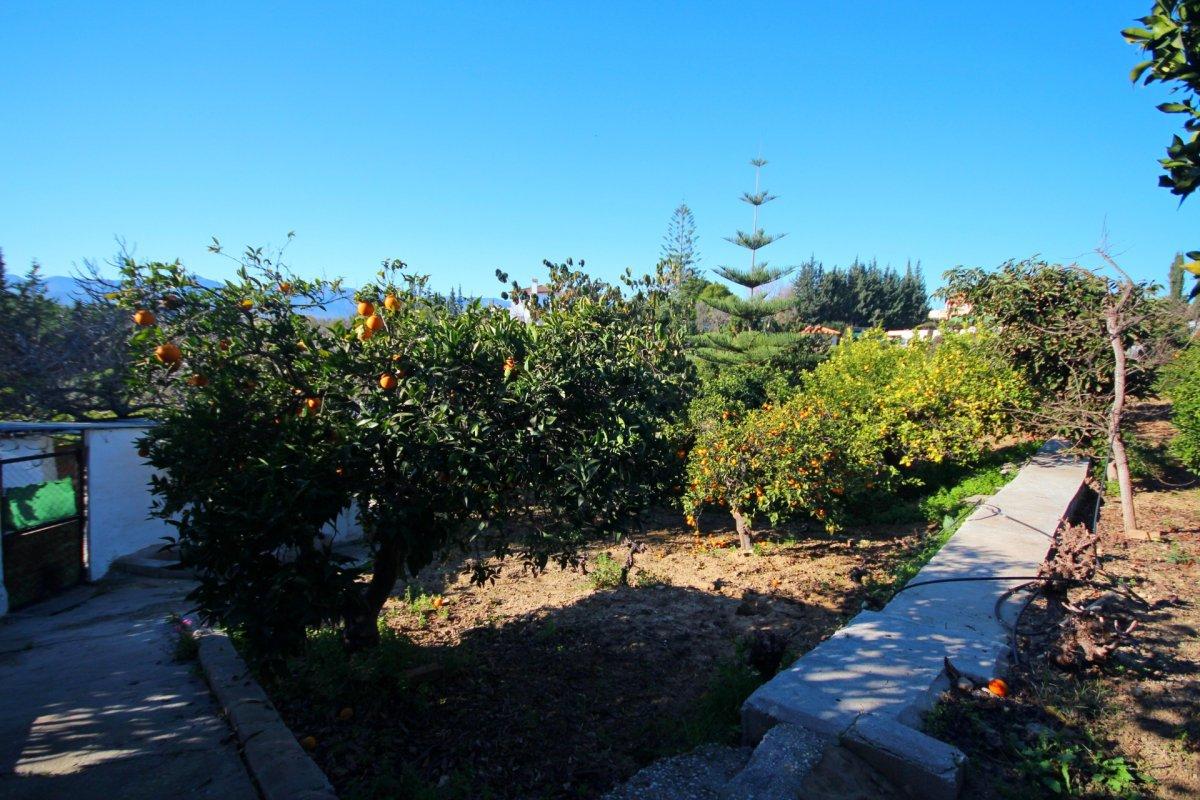 Finca de 4200 metros con chalet y arboles frutales en una zona tranquila de alhaurin - imagenInmueble28