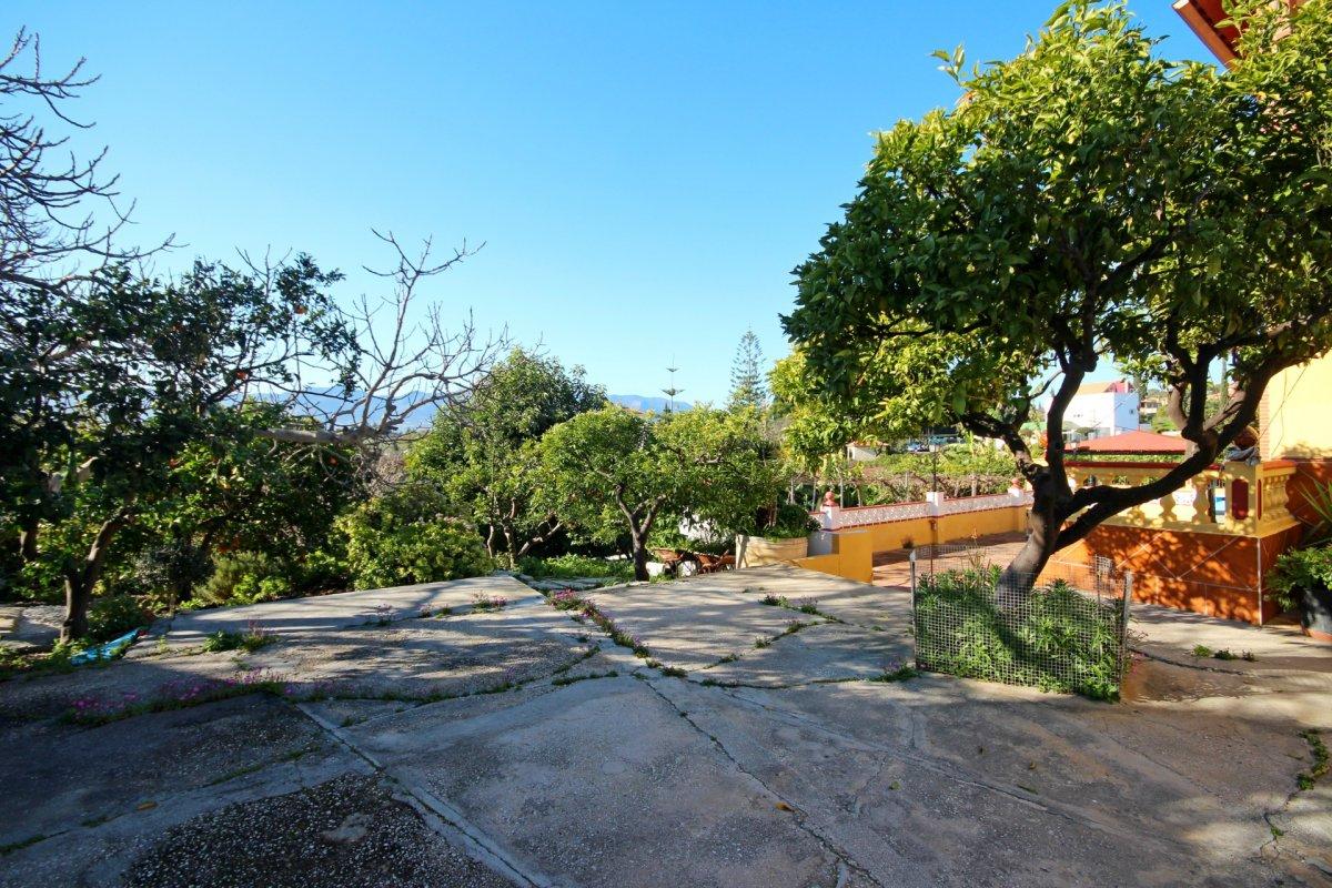 Finca de 4200 metros con chalet y arboles frutales en una zona tranquila de alhaurin - imagenInmueble4