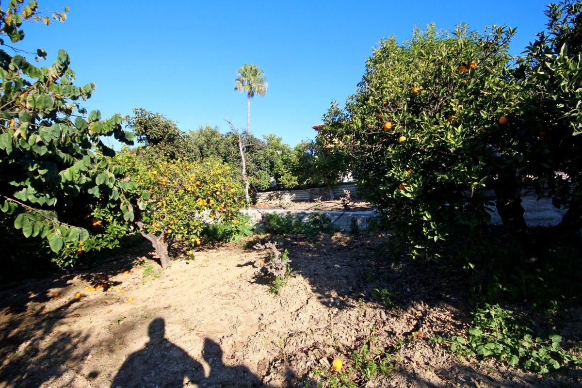 Finca de 4200 metros con chalet y arboles frutales en una zona tranquila de alhaurin - imagenInmueble5