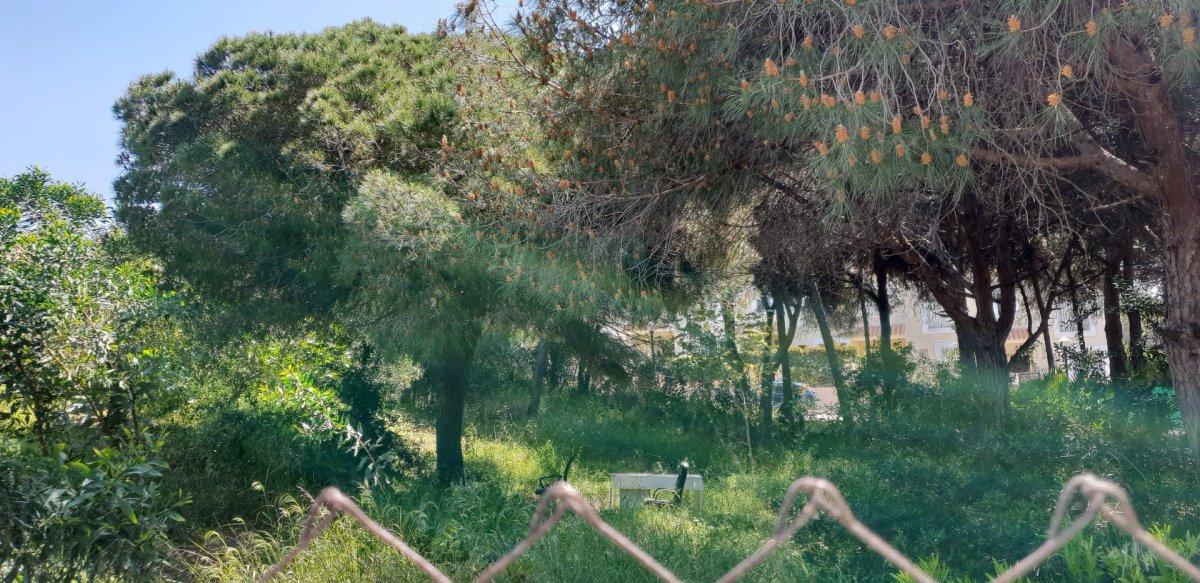 Suelo urbano consolidado para construir  6 villas en calahonda - imagenInmueble12