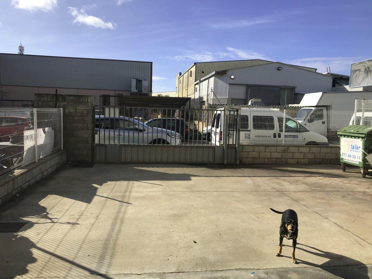 Nave industrial a pleno rendimiento en polígono son noguera llucmajor, con parking privado - imagenInmueble2