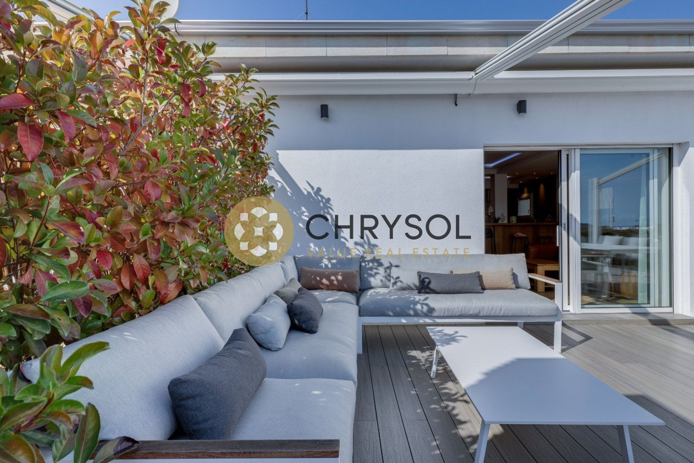 Photogallery - 33 - Chrysol Value