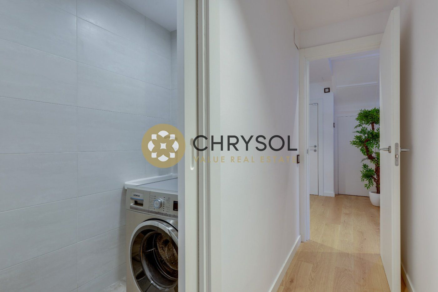 Photogallery - 38 - Chrysol Value