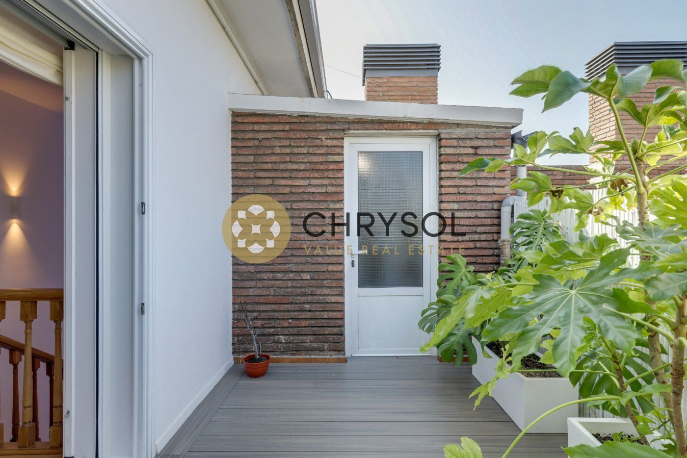Photogallery - 40 - Chrysol Value