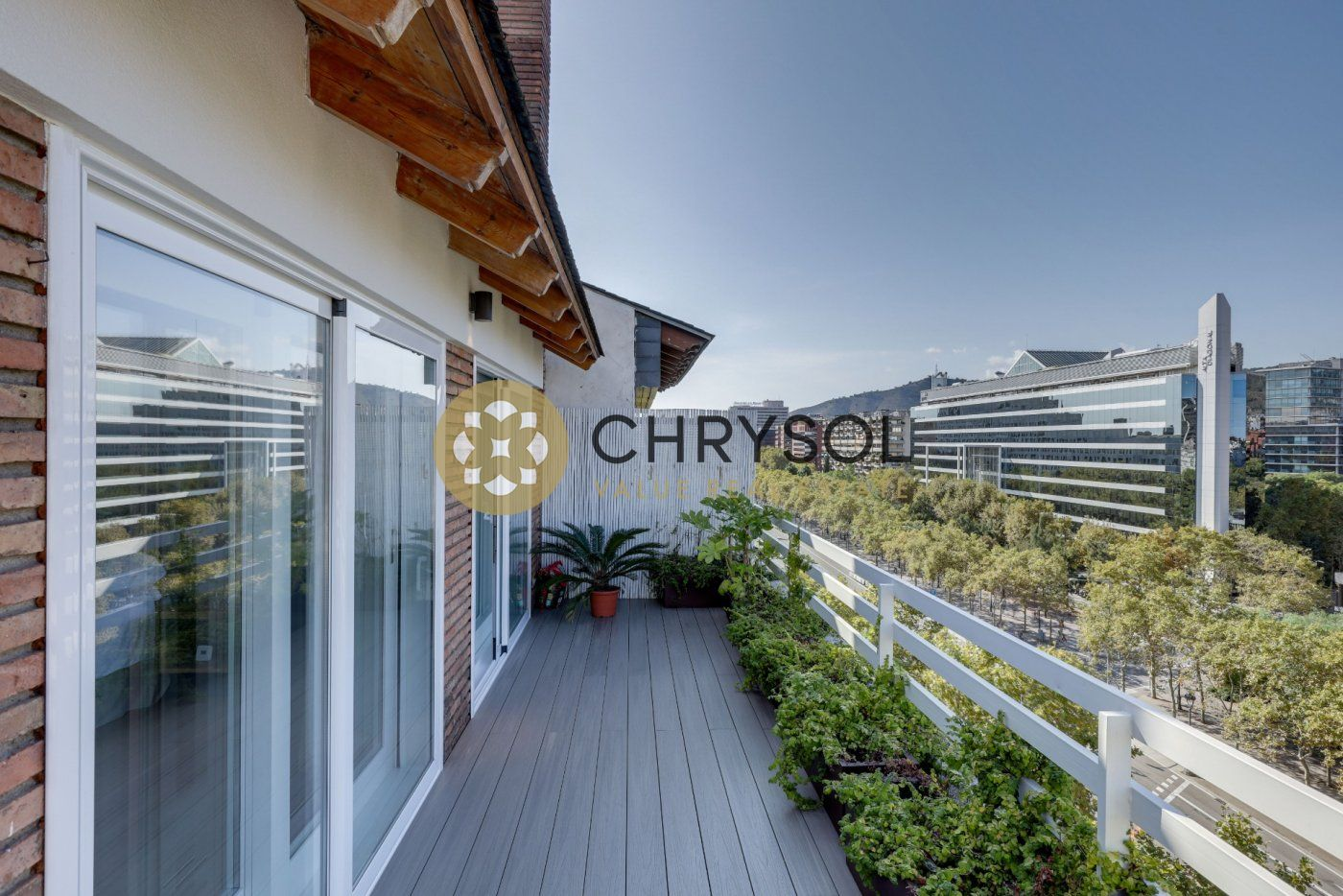 Photogallery - 49 - Chrysol Value