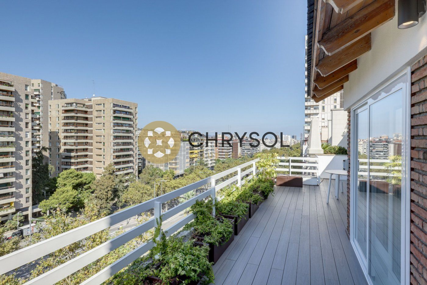 Photogallery - 50 - Chrysol Value