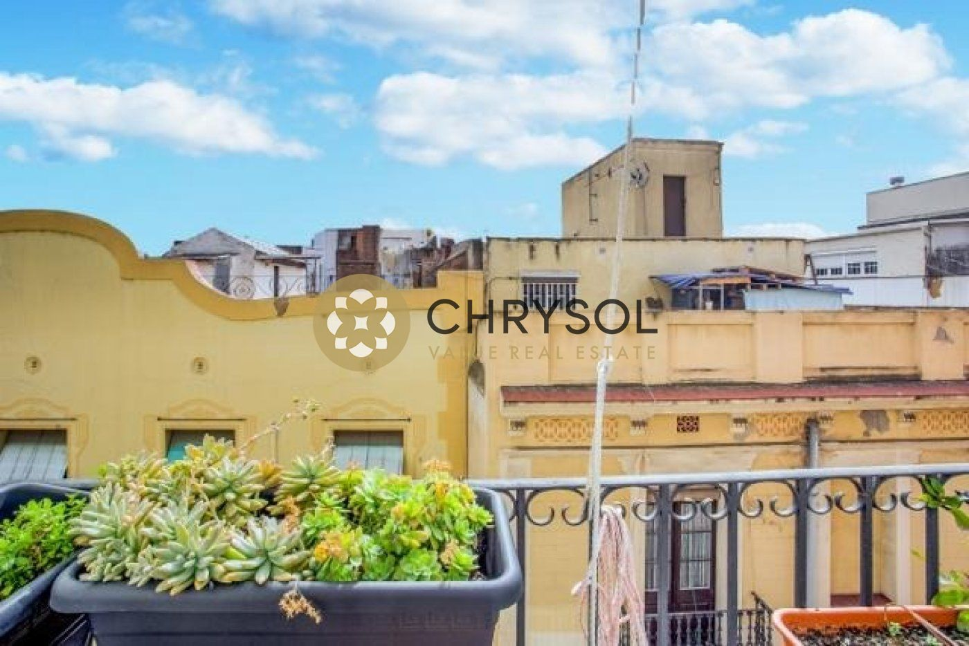 Fotogalería - 15 - Chrysol Value