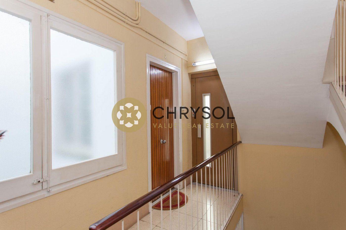 Fotogalería - 35 - Chrysol Value