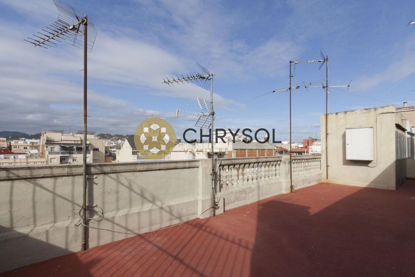 Photogallery - 29 - Chrysol Value