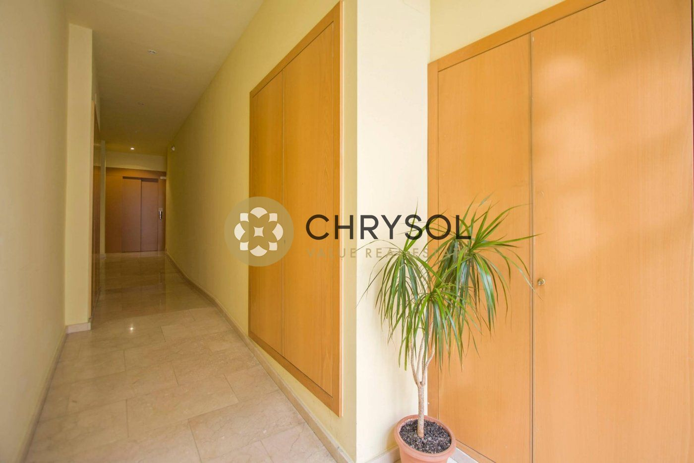 Photogallery - 14 - Chrysol Value
