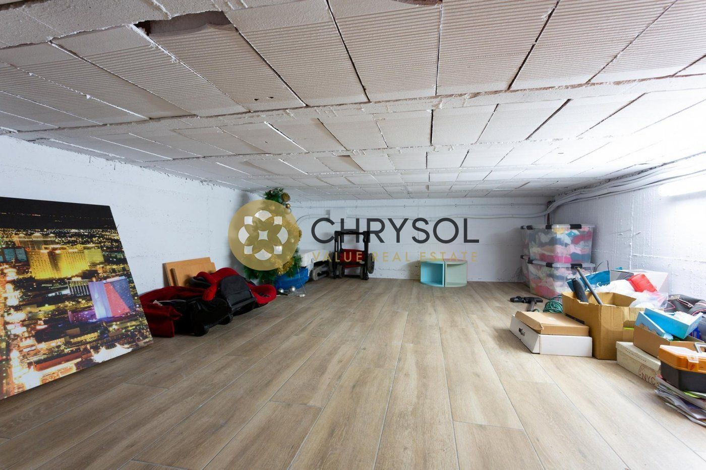 Photogallery - 53 - Chrysol Value