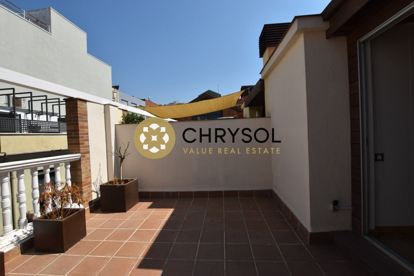 Photogallery - 37 - Chrysol Value