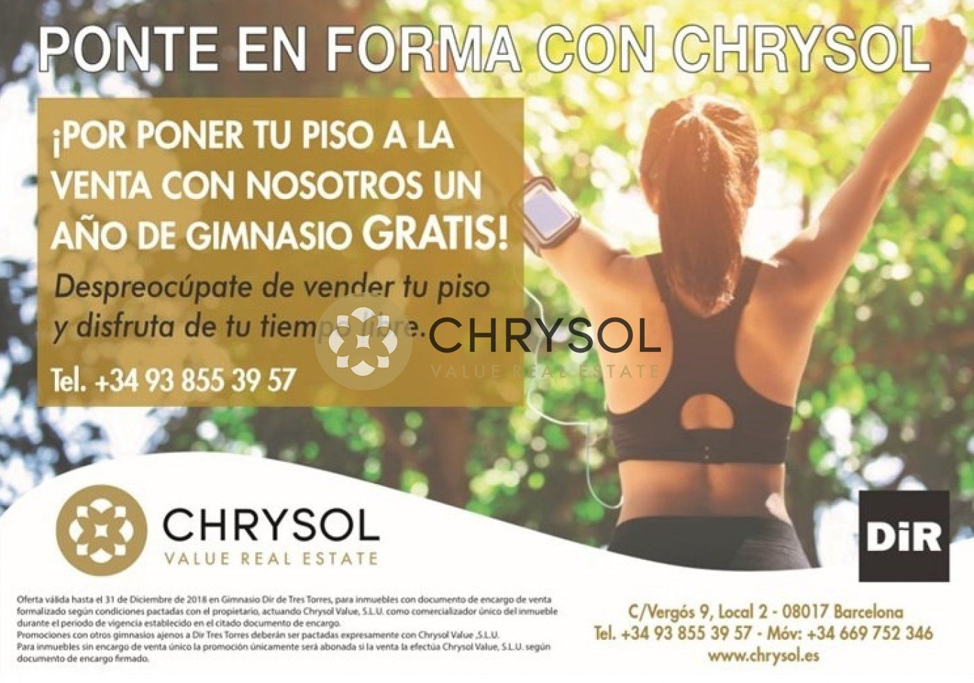 Fotogalería - 15 - Chrysol Value