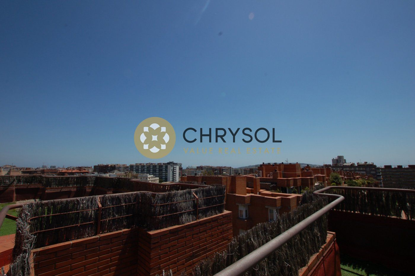 Fotogalería - 39 - Chrysol Value