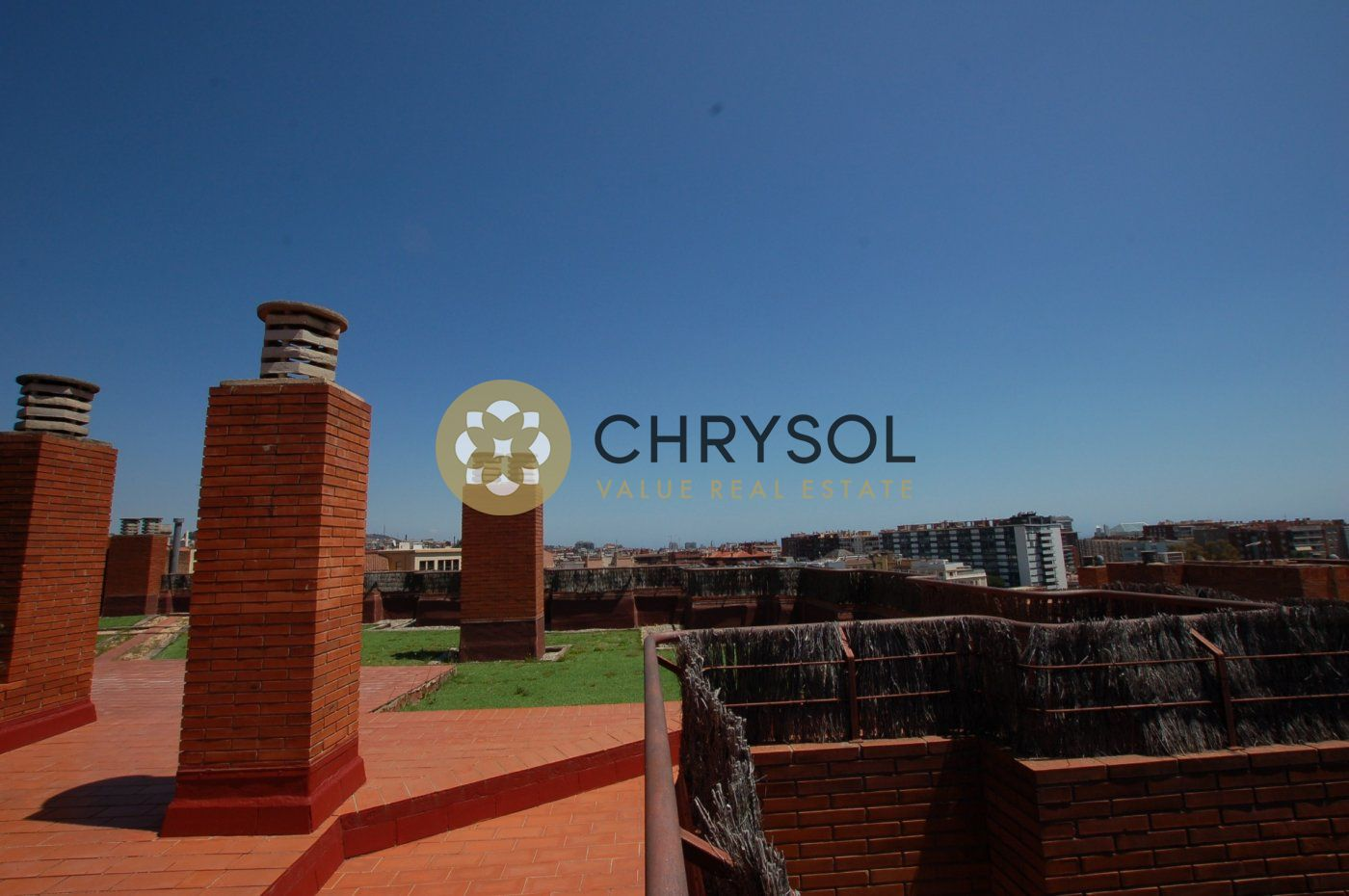 Fotogalería - 55 - Chrysol Value