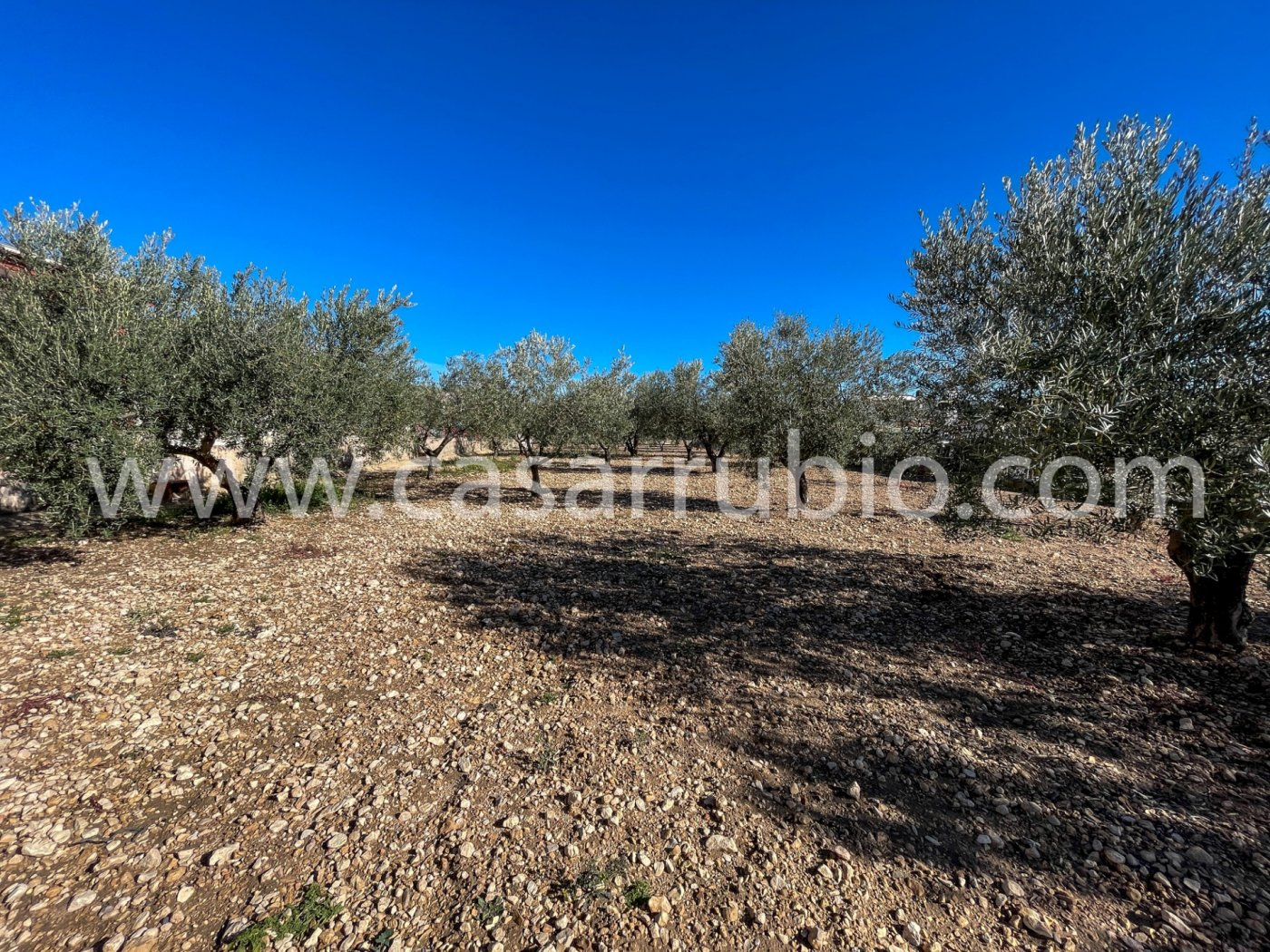 Casas de campo en la zona de la cava de onil !!! - imagenInmueble14